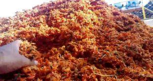 لیست قیمت تفاله گوجه
