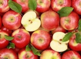 تفاله سیب درجه یک